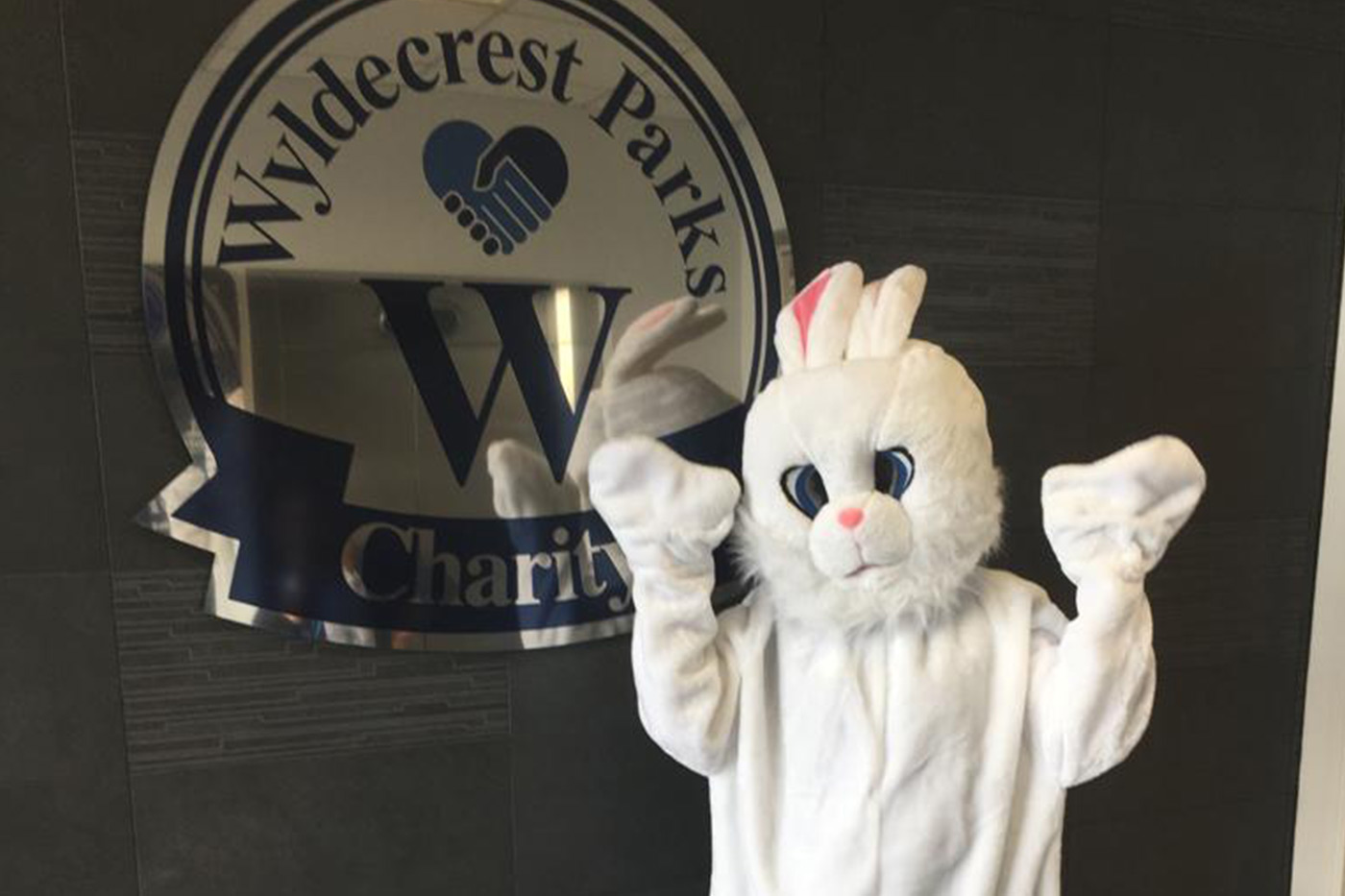 Bunny-with-Charity-Logo